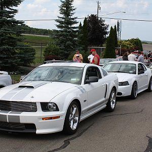 2007 Shelby Mustang GT