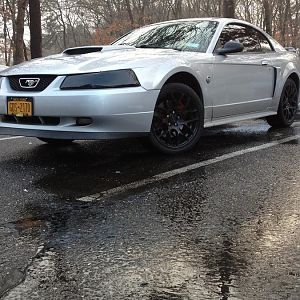 not happy with my old rims and headlight tint... miss my old mustang...