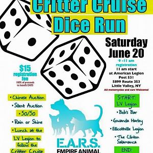 EARS Dice Run Flier