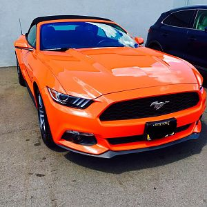 2016 Ecoboost Premium convertible. Yes 4cyl does still count!